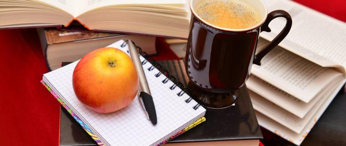 Wie finde ich den richtigen Schreibratgeber?